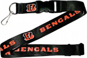 Aminco International NFL-LN-095-02 Lanyard - Cincinnati Bengals