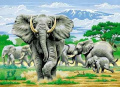 Elephants - The Charge Paint By Numbers Large