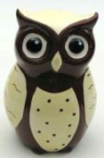 International Wholesale Gifts 049-22134 Ceramic Owl Bank