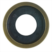 Blue Flame DFR.04 Flange Ring - Antique Brass