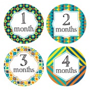 Baby Colourful Monthly Stickers - Milestone Onesie Stickers - 1-12 Months - Pinkie Penguin