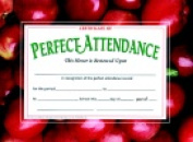 Hayes 22cm x 28cm . Perfect Attendance Certificate Pack 30