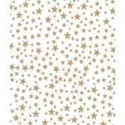 Deluxe Small Business Sales 11-02-224 50cm x 80cm . Gold Stars Tissue Paper White