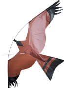 Hawk Single Line Bird Of Prey Kite