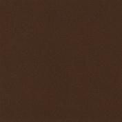 LaCarte Earth Pastel Paper Pack of Five - 50cm . X 60cm .