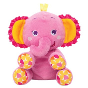 Bright Starts Pretty in Pink Snuggle 'n Shake Pal