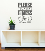 Wall Decor Plus More WDPM3324 Please Excuse the Mess We Live Here Home Decor Wall Decal Sticker for Parents and Kids, 60cm x 41cm , Storm Grey
