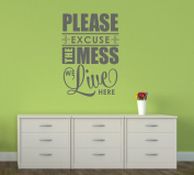 Wall Decor Plus More WDPM3326 Please Excuse the Mess We Live Here Home Decor Wall Decal Sticker for Parents and Kids, 80cm x 50cm , Storm Grey