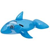 Best Way Transparent Whale Rider