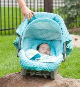Carseat Canopy 5 Pc Whole Caboodle (Hayden) Baby Infant Car Seat Cover Kit with Minky Fabric