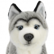 Plush 25cm Husky - Grey and White