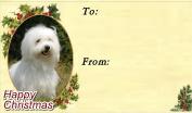 Coton de Tulear Dog Christmas Labels (42) - Self Adhesive