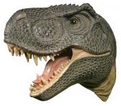T-Rex Head / Trophy / Bust / Wall Art / Tyrannosaurus