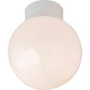 White Bathroom Ceiling Globe Robus Bathroom Ceiling Globe 60W