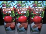 Lot of 3 Bath & Body Works Sunlight & Apple Trees Nourishing Hand Cream 60ml Each