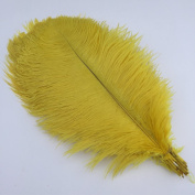 Sowder Yellow Ostrich Feathers 18-20inch(45-50cm) for Home Wedding Decoration Pack of 10pcs