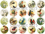 Catherine Klein Birds and Butterfly 4.4cm Circles Collage Sheet