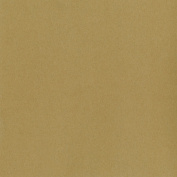 WorldWin Kraft Heavyweight Cardstock 30cm x 30cm 25/Pkg-