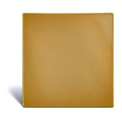 Stomahesive Skin Barrier - 10cm x 10cm Wafers - Box of 5 - Convatec 21712
