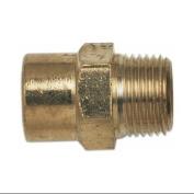 CAMPBELL HAUSFELD 0.6cm NPT Female x 1cm NPT Male Adapter