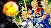 Anime family 081 Dragon Ball Z - Goku Fighting Hot Japan Anime 110cm x 60cm Poster