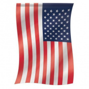 Carson 70cm x 110cm . American House Flag