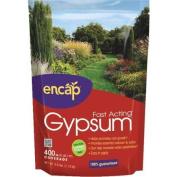 Encap LLC 10613-6 Fast Acting Gypsum-1.1kg GARDEN GYPSUM