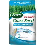 Scotts Turf Builder Grass Seed Kentucky Bluegrass Mix, 1.4kg