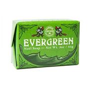 Evergreen Noel Holiday Soap
