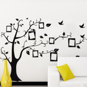 Black Photo Frame Tree Birds Wall Decal Home Sticker Paper Removable Living Room Bedroom Art Picture DIY Mural Girls Boys Kids Nursery Baby Playroom Decoration + Gift Colourful Butterflies