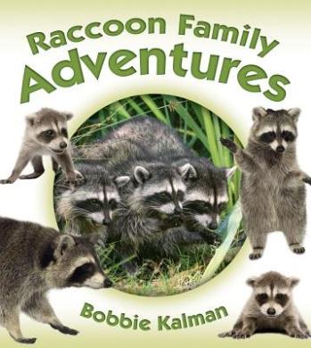 Raccoon Family Adventures (Animal Family Adventures)