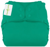 BumGenius Elemental All in One Cloth Nappy - Snap - Hummingbird - One Size