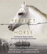 The Perfect Horse [Audio]