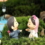 YaRich DIY Miniature Bride Groom Ornaments Potted Plant Garden Decoration
