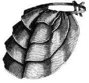 1871 Stiff Lace Bustle