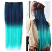 Colorlife 22 Inch/ 55cm Peacock Green to Light Green Ombre Colour Straight Synthetic Hair Extension with 5 Clips