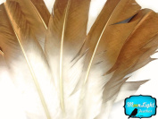 Turkey Feathers 6 Pieces Gold Metallic Spray Paint Turkey Round Wing Quill Feathers