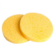 Professional Make-Up Remover Mask Remover Sponges Twin Pack x 2