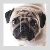 Sticar-it Ltd Cute PUG Dog Pet Light Switch Sticker vinyl cover skin decal For any Room