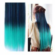 Stepupgirl 60cm Dark to Light Green Ombre Colour Straight Full Head Synthetic Clip in Hair Extension with Souvenir Card