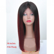 30cm - 60cm Ombre #1b/#burg Two Tone Colour Glueless Brazilian Virgin Hair Lace Front Wig for African American Women