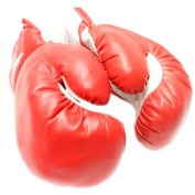 120ml RED Boxing MMA Kids Youth Practise Training Gloves Faux Leather