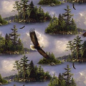 "1 Yard - ""With Wings Like Eagles"" Soaring Bald Eagles Silky Cotton Fabric (Great for Quilting, Sewing, Craft Projects, Throw Pillows & More) 1 Yard X 110cm"