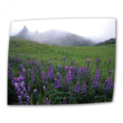 Art Wall Figueroa Mountain with Fog 60cm by 90cm Flat/Rolled Canvas by Kathy Yates with 5.1cm Accent Border