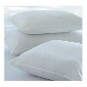 "60 x 60 cm, 24"" x 24"" Polyester Hollowfibre Cushion Inners/ Pads Value Pack of 2 : Made in the UK by Sleep & Smile"