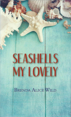 Seashells My Lovely