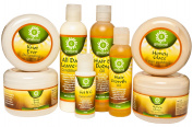 G'NATURAL L.O.C. MOISTURE SYSTEM PACKAGE