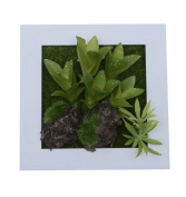 3D Wall Hanger Artificial Flowers Metope Succulent plants Moss on the Stones Imitation Wood Frame Vase House Decorations living Room, 15cm * 15cm