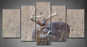 Wall art painting 5 Panel Wall Art Whitetail Deer Buck In A Foggy Field Painting The Picture Print On Canvas Animal Pictures For Home Decor Decoration Gift piece