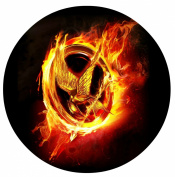 The Hunger Games Mockingjay Katniss Edible Image Photo Sugar Frosting Icing Cake Topper Sheet Birthday Party - 20cm ROUND - 75355